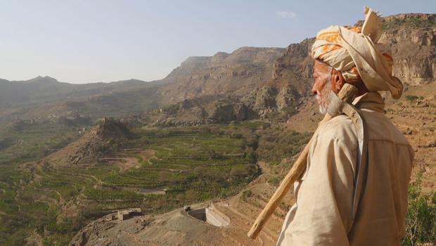 yemen-coffee-coffee-farmer-620.jpg