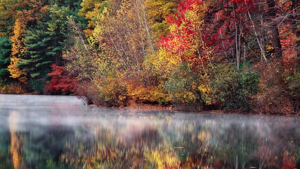 scot-miller-walden-pond-reflection-620.jpg