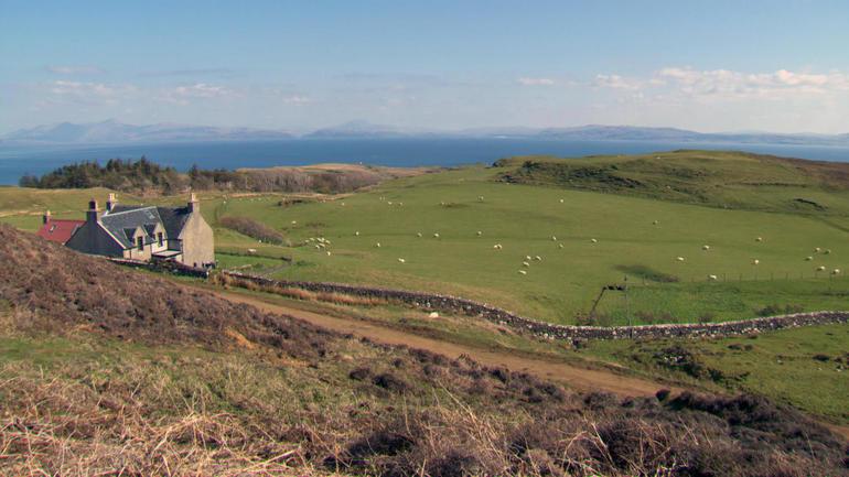 sheep-farm-ws.jpg