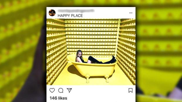 1219-en-instagram-yuccas.jpg