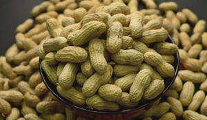 FDA recommends approval for peanut allergy treatment
