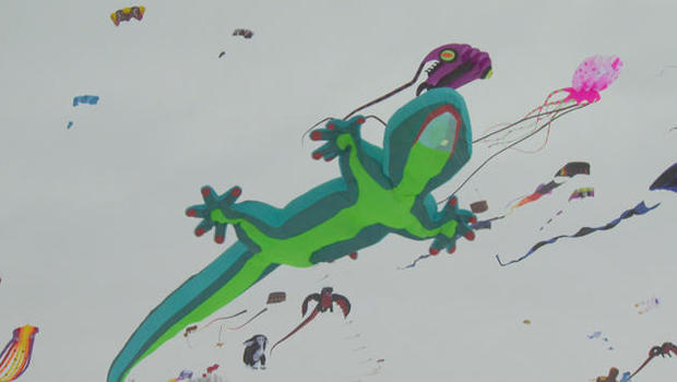 kites-sm-j234-forair-cowan-kites-032518-copy-01-copy-01-nogroups-01-consolidated-01-frame-7958.jpg