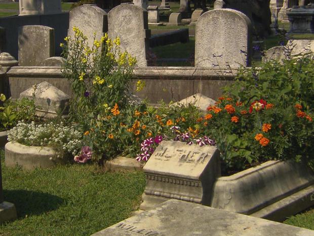 grave-gardeners-the-woodlands-view-c-promo.jpg