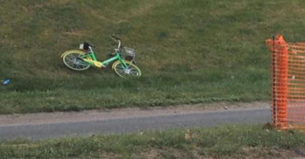 bike-litter.jpg