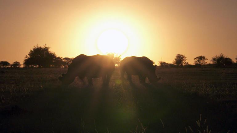 hume-ranch-sunset.jpg