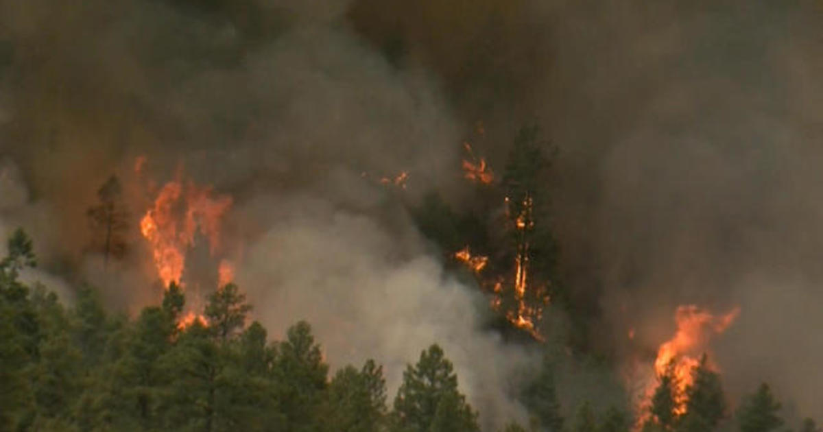 Wildfires rip across 7 states in the West