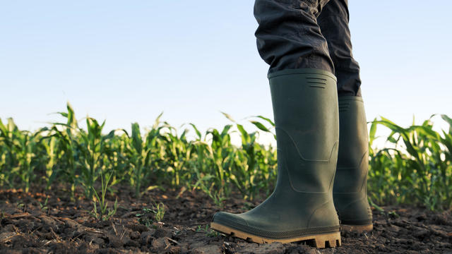 Farmer in rubber boots standing in the field
