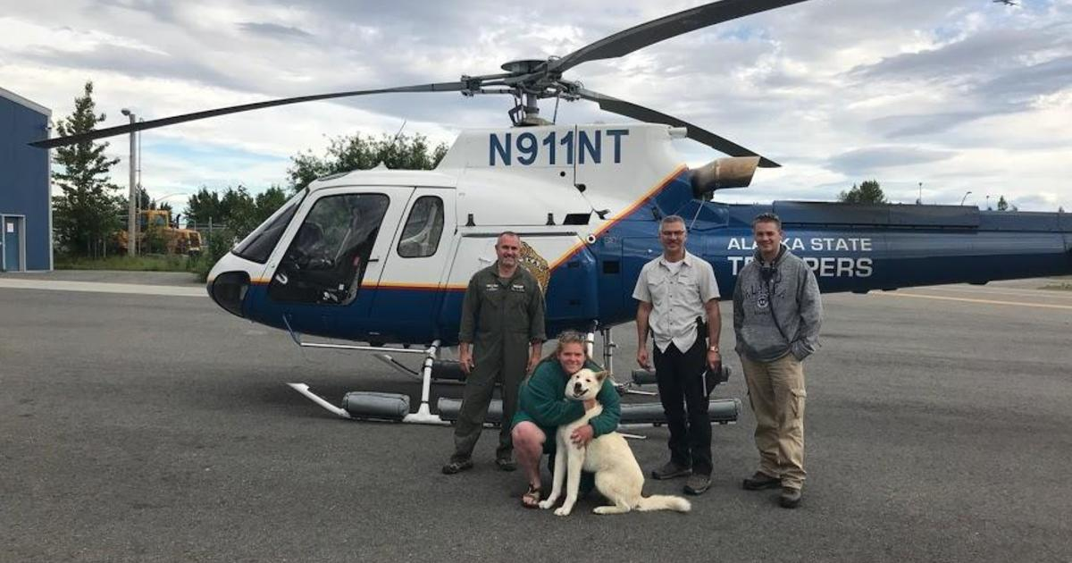 After Husky saves deaf hiker on Alaska trail, others come forward saying he rescued them, too