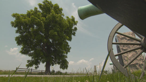 witness-trees-gettysburg-cannon-b-620.jpg