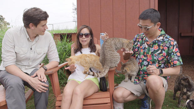 lanai-cat-sanctuary-guests-wendy-louie-and-tony-young-with-conor-knighton-620.jpg