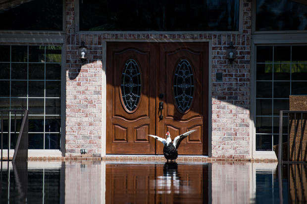 South Carolina Flooding Continues Over A Week After Florence Made Landfall