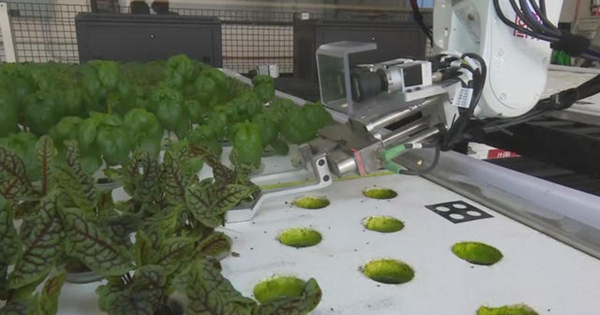 """""""Marty"""" the robot ready to roll at some Stop & Shop, Giant Food and Martin's stores - CBS News"""