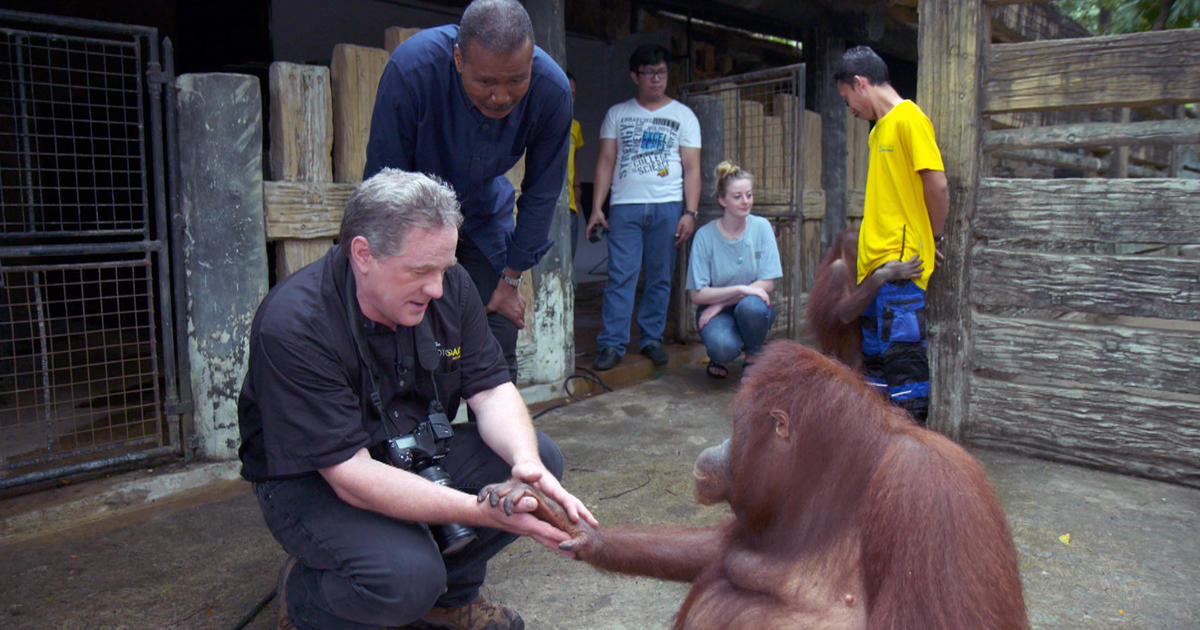 Saving memories of animals with Joel Sartore's Photo Ark