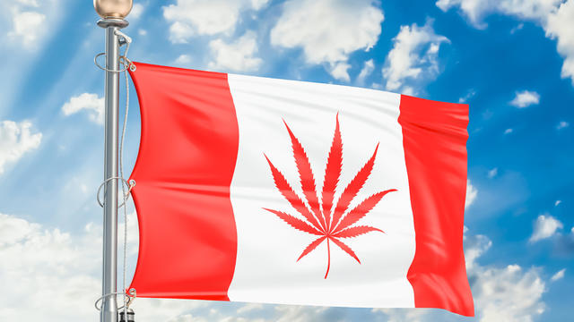 Legalization of cannabis in Canada. Canadian flag with marijuana leaf, 3D rendering