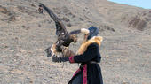 mongolianeaglehuntingtease0.jpg