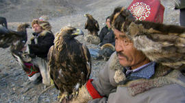 Genetic Genealogy, Off the Rails, Fly Like an Eagle