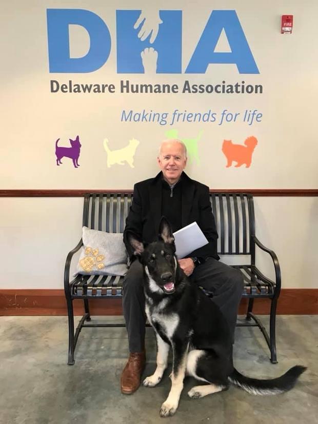 joe-biden-rescue-dog-2018-11-17.jpg