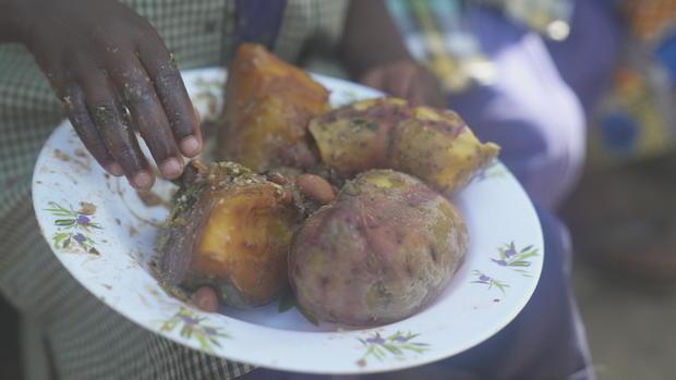 Orange sweet potatoes used to fight malnutrition
