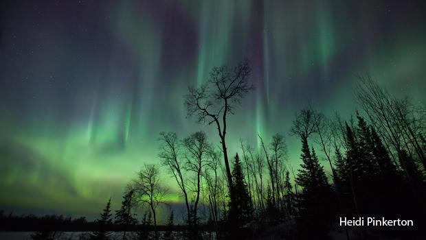 northern-lights-viridescent-heidi-pinkerton-copyright-2018-620.jpg