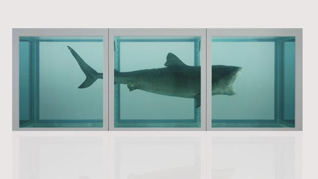 shark-in-formaldehyde-the-physical-impossibility-of-death-in-the-mind-of-someone-living-1991-by-damien-hirst-620.jpg