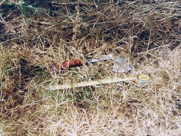 chino-hatchet-grass.jpg