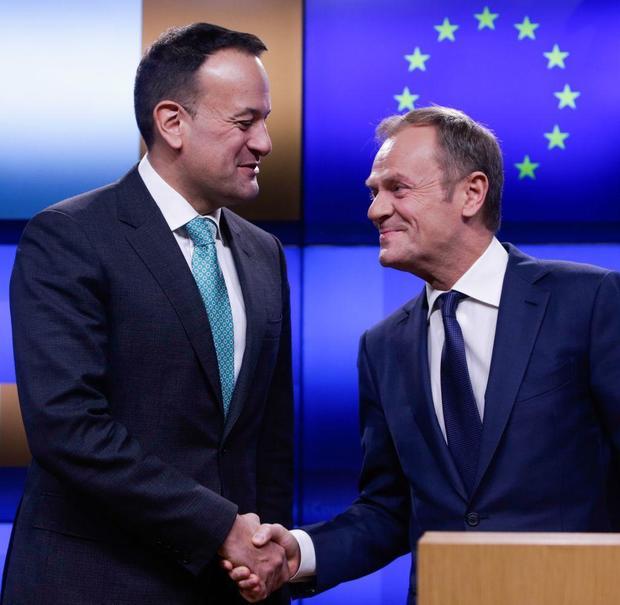 Donald Tusk shakes hands with Irish Prime Minister, Leo Varadkar