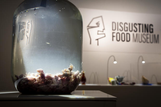 Disgusting Food Museum: Photos of the most disgusting food in the world (WARNING: GRAPHIC IMAGES)