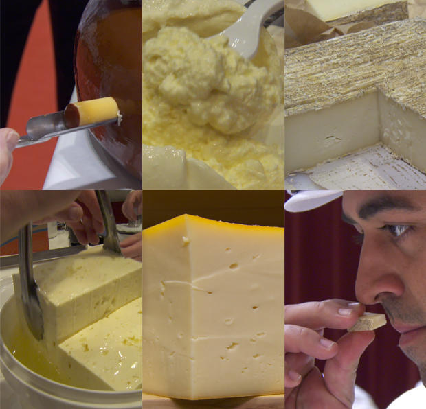 cheese-montage-620-tall.jpg