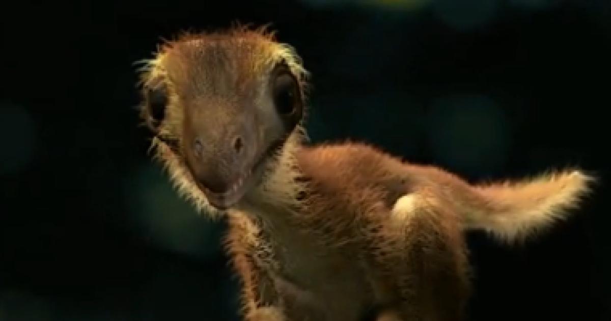 10CM TY Beanie Boo Teeny Tys Plush Unicorn Dinosaur Panda ...  |Baby Dinosaur Big Eyes