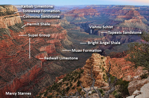 grand-canyon-major-layers-marcy-starnes-620-tall.jpg