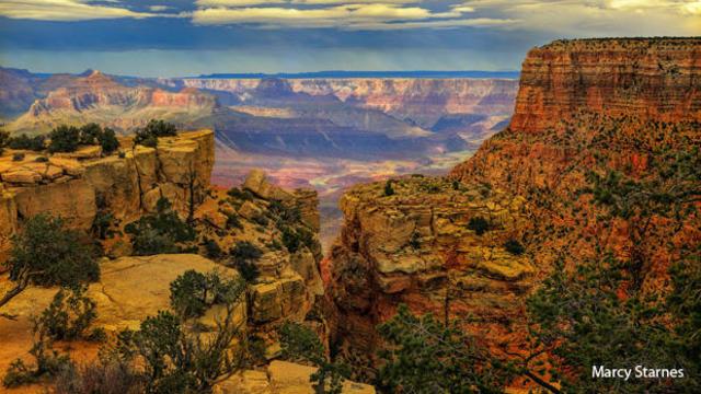 grand-canyon-pinyon-pines-and-juniper-woodland-marcy-starnes-620.jpg