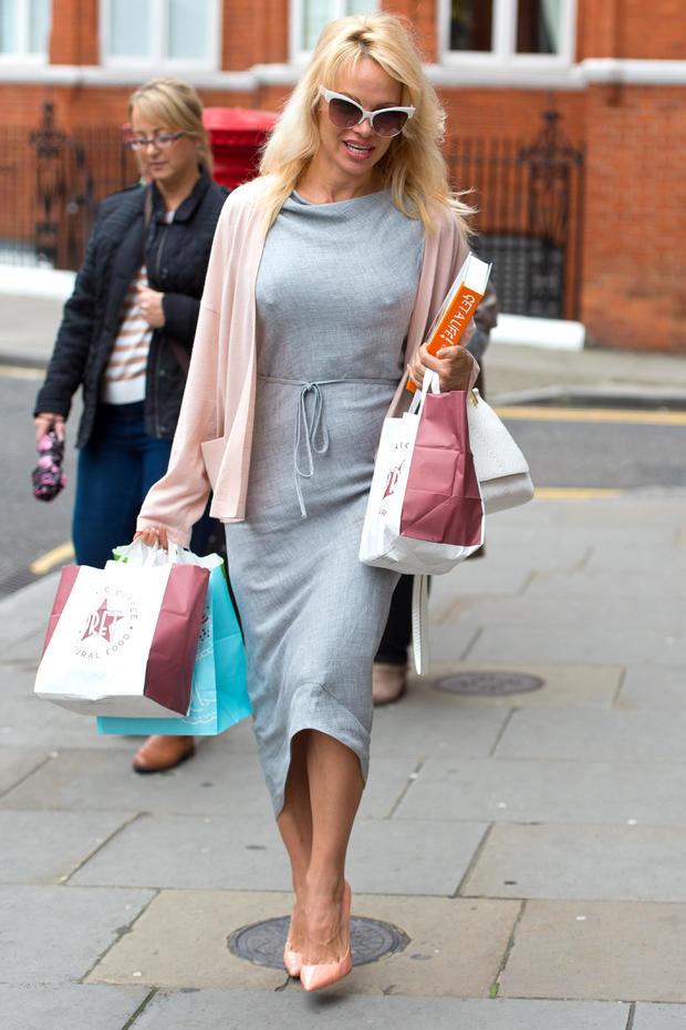 Pamela Anderson Delivers Vegan Lunch To Julian Assange At The Ecuadorian Embassy