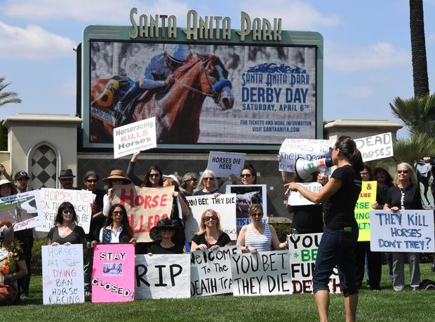 Horse racing deaths: Third horse in 9 days dies at Santa Anita Park in Southern California