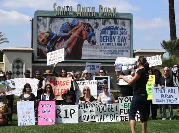 Horse deaths continue at Santa Anita Park horse racing track