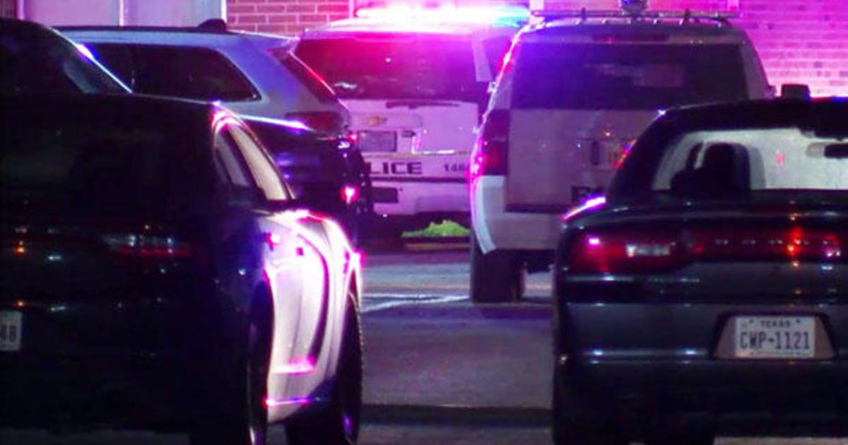 Baytown, Texas, police officer fatally shoots Pamela Turner