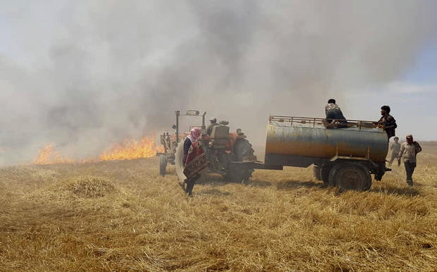 Mideast Burning Crops