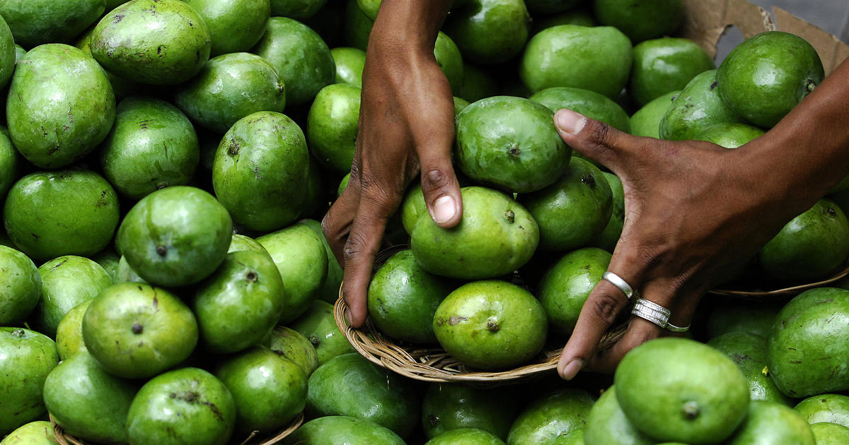 Philippines mangoes: The Philippines is overwhelmed by excess mangoes caused by dry spell from El Niño