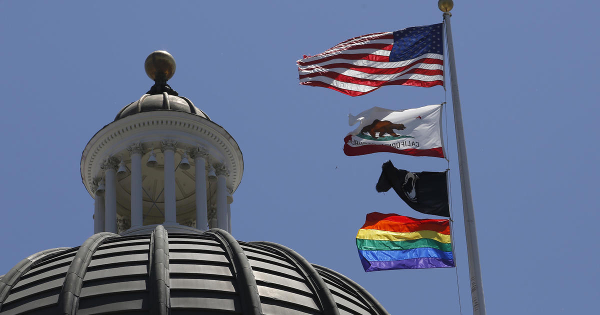 Image result for california pride state capitol