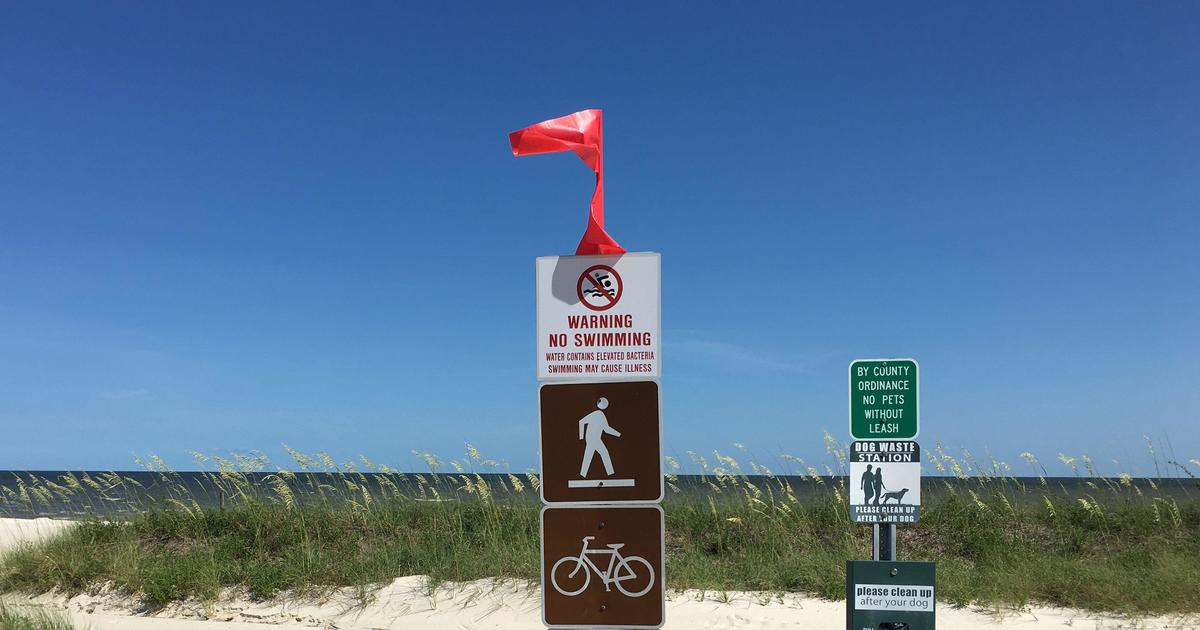 Toxic algae bloom closes Mississippi beaches across Gulf