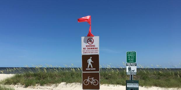 mississippi-beaches-closed-toxic-algae.jpg