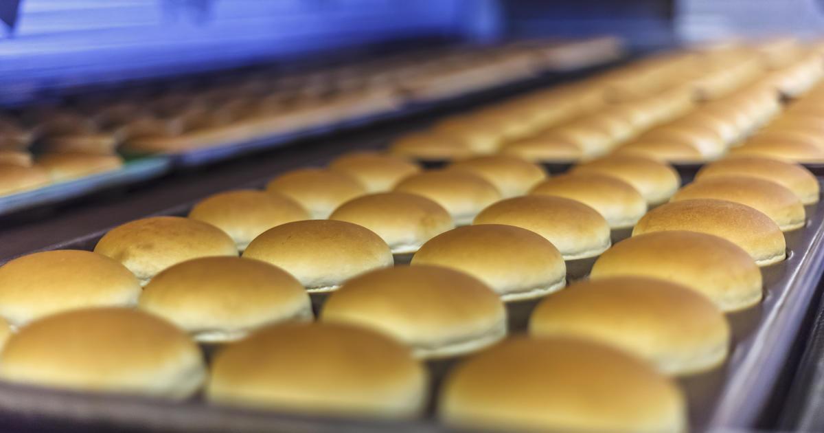 Bun recall: Flower Foods hamburger and hot dog buns recalled for