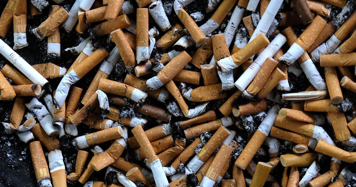 Cigarettes: Experts say cigarette butts — not plastic straws — are largest human-caused pollutant