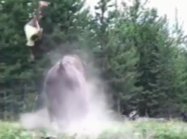 bison-girl.jpg