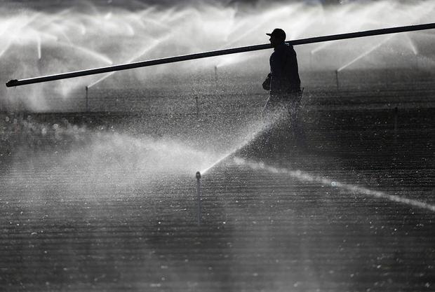jobs_farm-worker