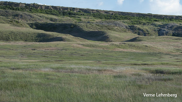 northern-montana-grassland-with-prairie-dog-mounds-verne-lehmberg-620.jpg