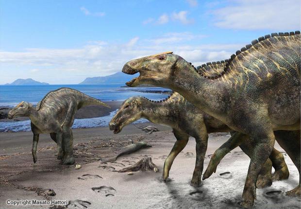 fig1-kamuysaurus-japonicus-1024x710.jpg