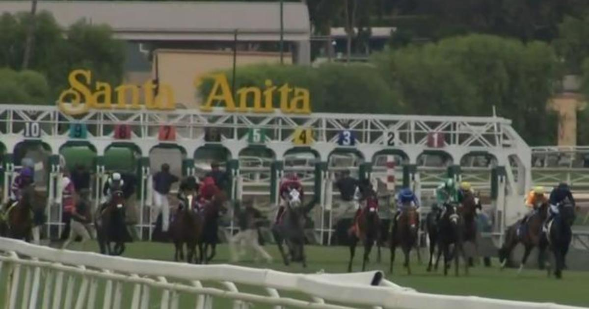 Horse Euthanized At Santa Anita Park 2 Days Into Racing