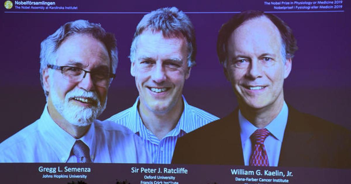 Nobel Prize in medicine honors pioneering research that helps fight disease