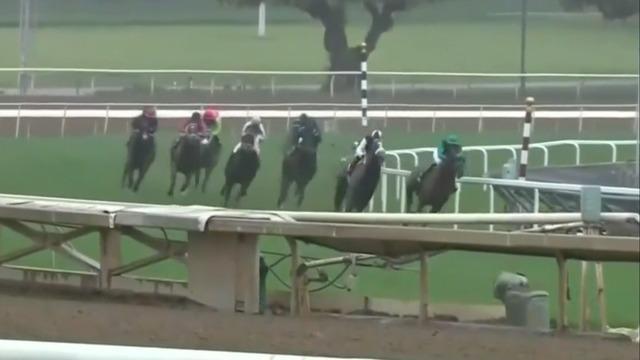 cbsn-fusion-34th-horse-dead-santa-anita-park-racetrack-southern-california-thumbnail-379665-640x360.jpg