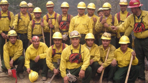 pineros-firefighters.png